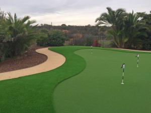 OmegaTurf Putting Green BB 022