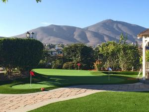 OmegaTurf Putting Green CC 032